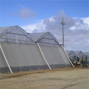 Земеделски мрежи против насекоми