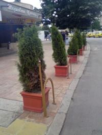 Саксии за паркове и градини