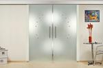 изготовление и монтаж стеклянных дверей с двумя крыльями