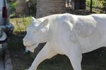 Статуя на лъв по клиентска заявка от полимербетон
