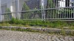 метална ограда от метален профил по поръчка