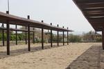 изработка на дървен навес за плаж
