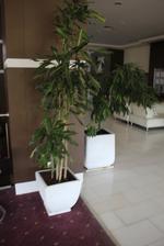 Налични бетонни кашпи за заведения за Вашето обзавеждане в хотел